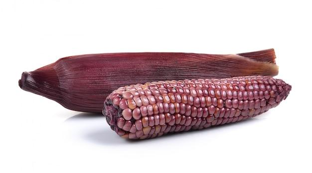 Purper graan dat op wit wordt geïsoleerd