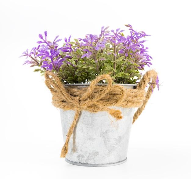 Purpere bloem in zilveren metaalemmer die op wit wordt geïsoleerd