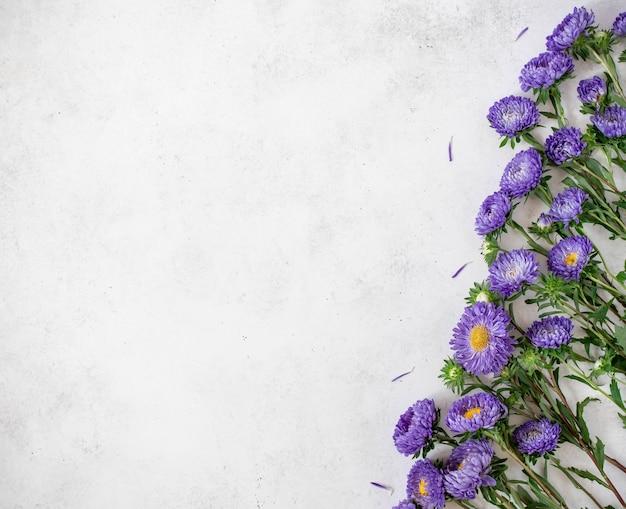 Purpere bloemen met bloemblaadjesachtergrond