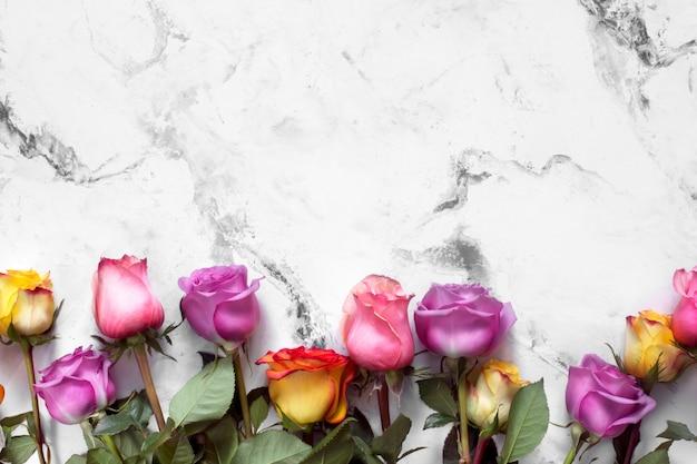 Purpere en gele rozen, doos huidig op witte achtergrond