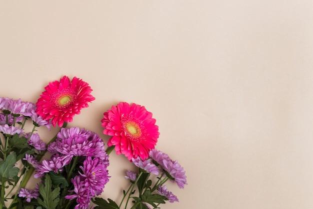 Purpere en rode bloemen op beige achtergrond