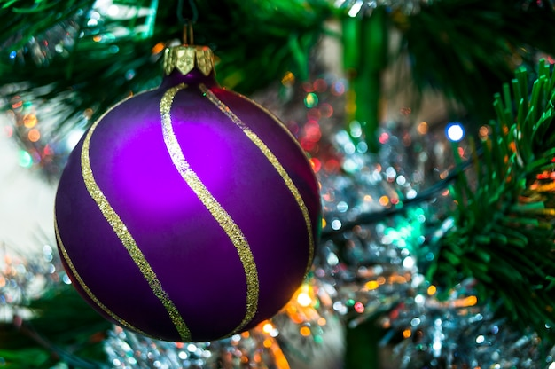 Purpere kerstmisbal op een nette tak