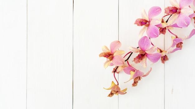 Purpere orchideebloem op een witte houten lijst.