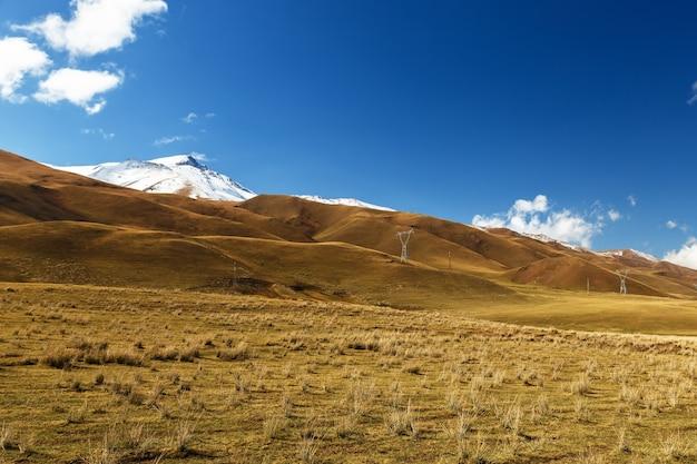 Pylonen van hoogspanningslijnen in de bergen