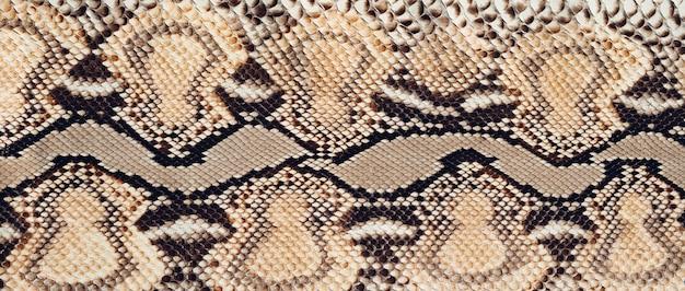 Python huidtextuur