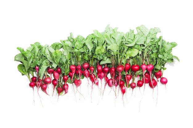 Radijs geïsoleerd op witte groenten
