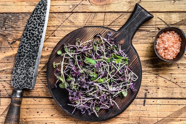 Radijs microgreens, groene bladeren en paarse stengels