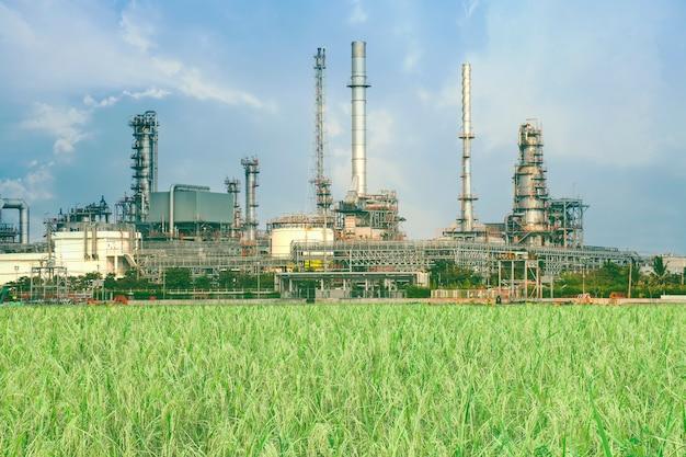 Raffinaderij of petrochemische industrie met rijstveld.