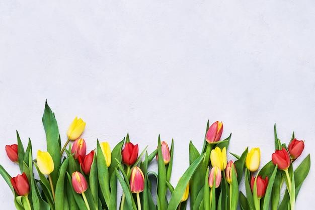 Rand van rode en gele tulpen op een lichte achtergrond.