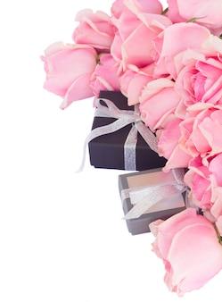 Rand van verse roze tuin rozen met geschenkdozen geïsoleerd op een witte achtergrond
