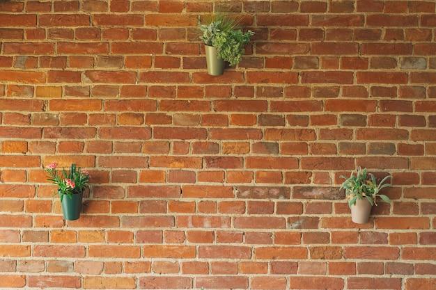 Ranunculus bloemen in vazen hangen op een bakstenen muur bakstenen achtergrond op het terras mooie bloemen i...