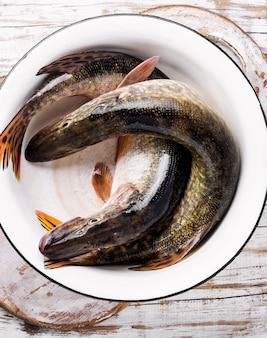 Rauwe hele vis