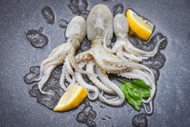 Rauwe inktvis op ijs verse inktvis, octopus of inktvis