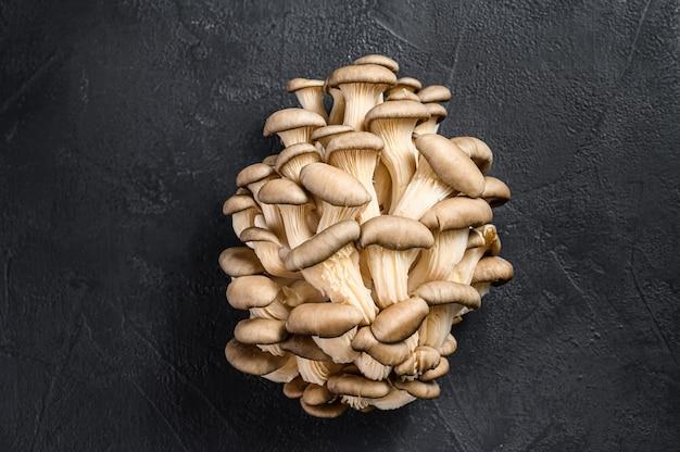 Rauwe oesterzwammen. biologisch voedsel.