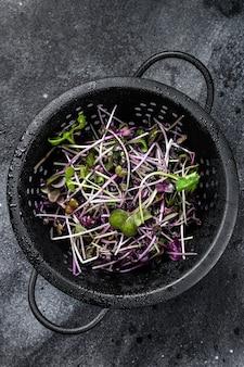 Rauwe radijs tuinkers spruiten in een vergiet Premium Foto