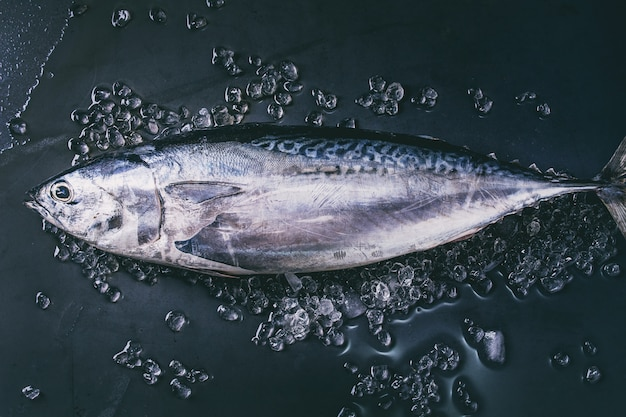 Rauwe verse tonijn