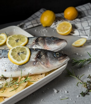 Rauwe vissamenstelling om te koken