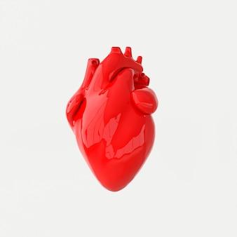 Realistisch menselijk hartorgaan met slagaders en aorta 3d-rendering