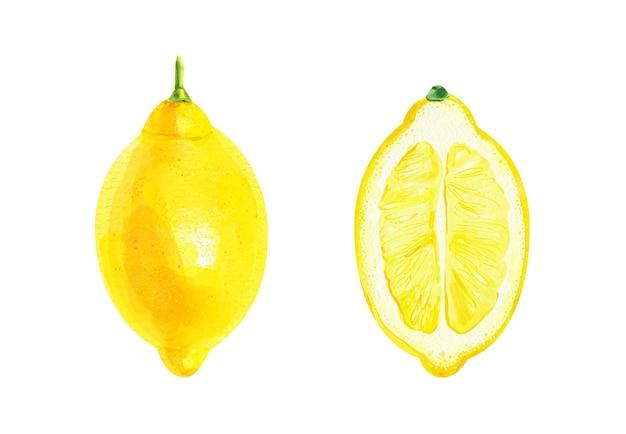 Realistische aquarel set van een citroen en een halve citroen op witte achtergrond