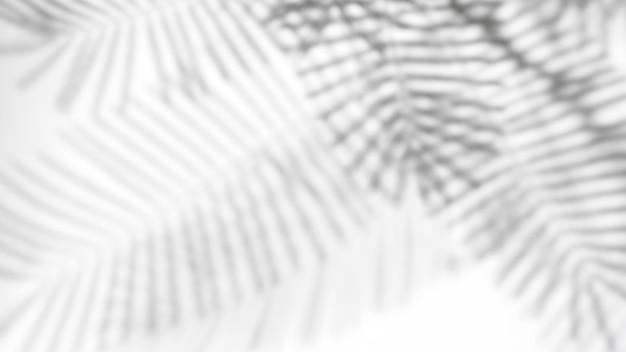 Realistische en organische tropische bladeren natuurlijke schaduw overlay-effect op witte textuur achtergrond