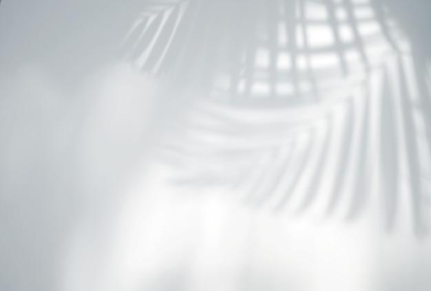 Realistische tropische bladeren schaduw overlay-effect op witte muur