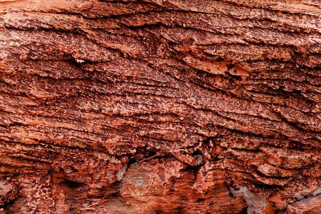 Red rock-laagoppervlakte voor textuurachtergrond