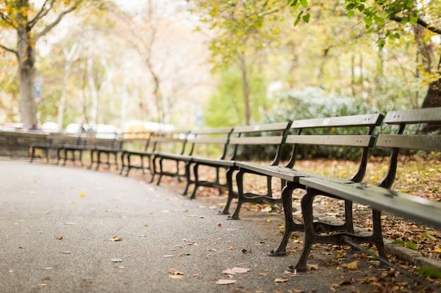 Reeks houten banken in het park met veel gevallen herfstbladeren met vaag