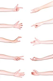 Reeks menselijke handen die op witte achtergrond gesturing