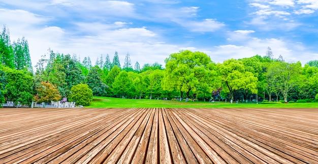 Reflectie hout zon gazon natuurlijke producten platteland