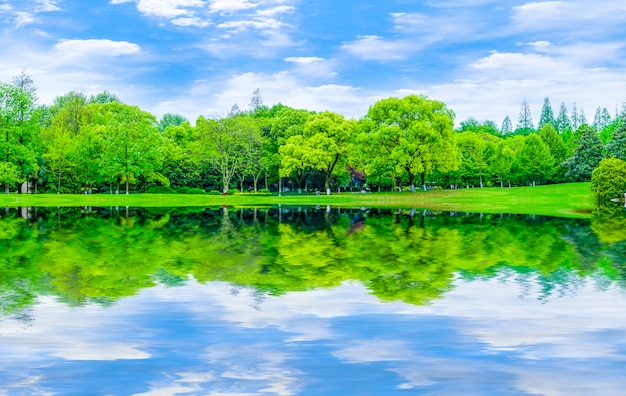 Reflectie tuin landschap gazon abstracte achtergrond blauwe lucht en witte wolken