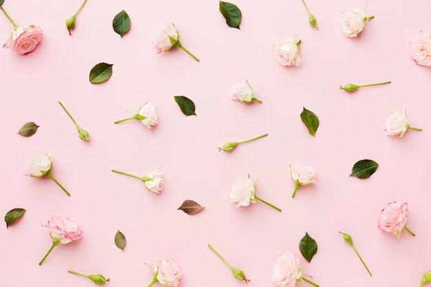 Regeling van bladeren en bloemen bovenaanzicht