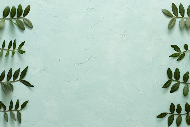 Regeling van groene bladeren in rij op groene achtergrond