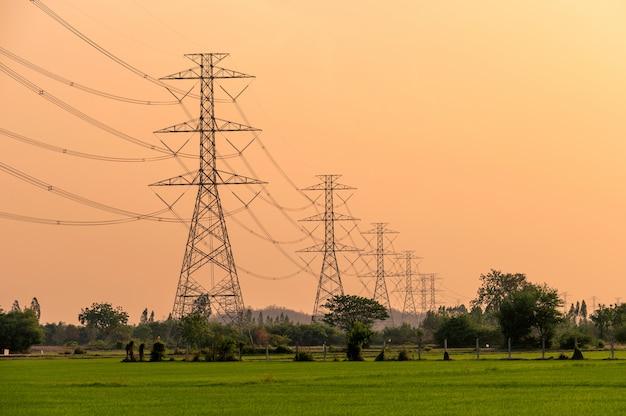 Regeling van hoogspanningspaal, transmissietoren op rijstveld bij zonsondergang