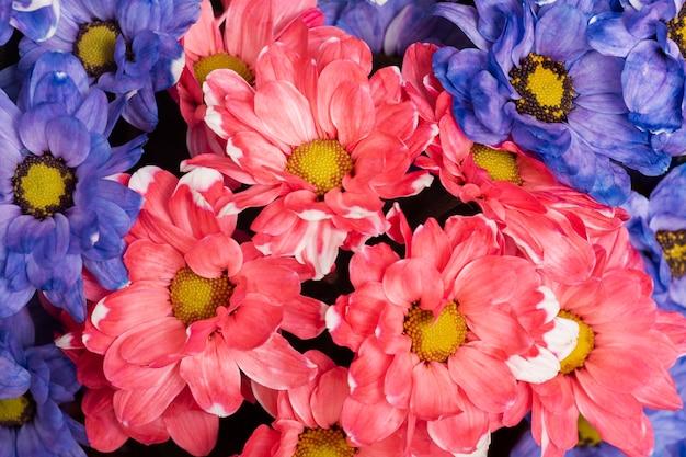 Regeling van mooie bloemenachtergrond