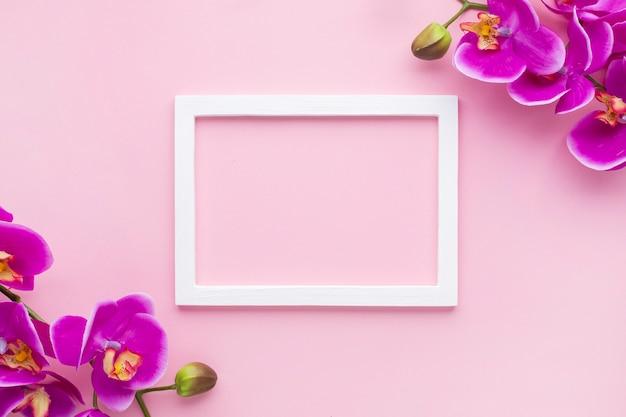 Regeling van orchideebloemen op een roze exemplaar ruimteachtergrond