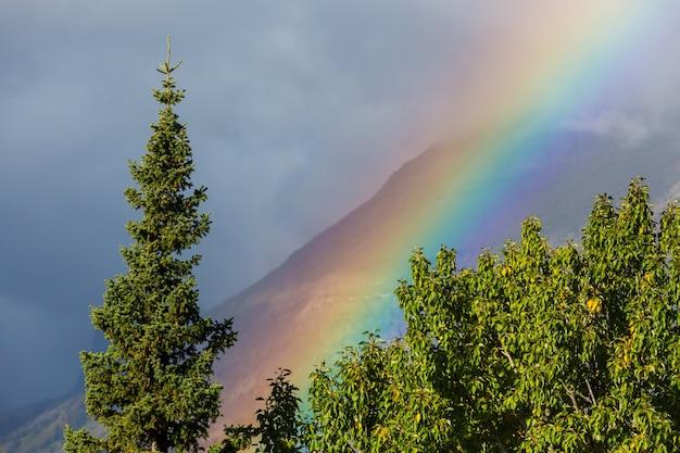 Regenboog boven bergen. prachtige natuurlijke landschappen. pittoreske natuur.