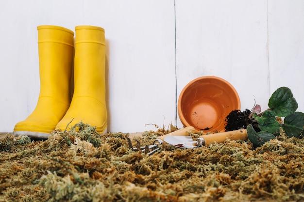 Regenlaarzen en lege pot op mos