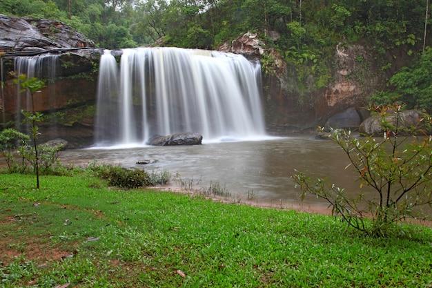 Regenwoud waterval