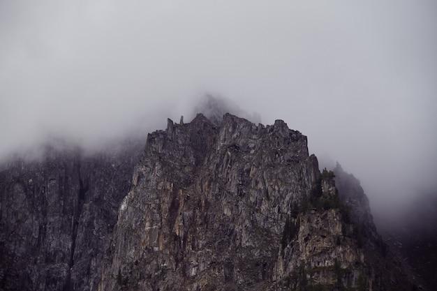 Reis te voet door de bergvalleien. de schoonheid van dieren in het wild. altai, de weg naar de meren van shavlinsky. wandeltocht