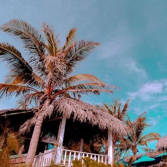 Reisconcept. vietnam. strand tropische locatie
