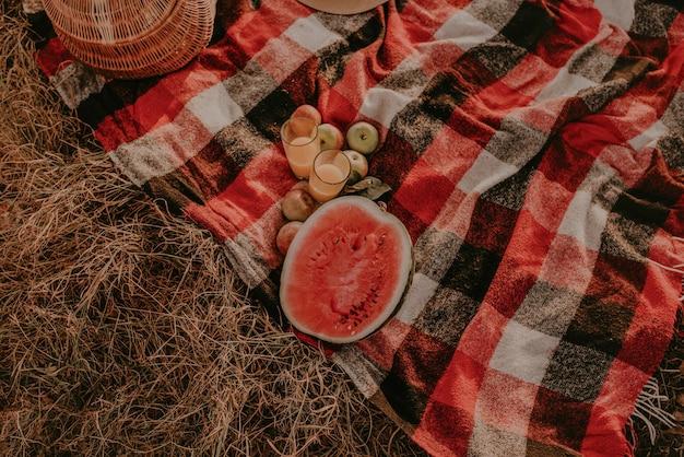 Reisdeken geruite rode plaid op gras in de zomer