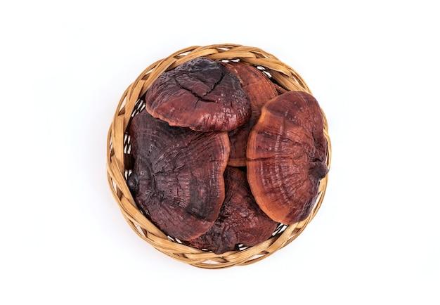 Reishi of lingzhi paddestoel gerangschikt in hartvorm, geïsoleerd op een witte achtergrond. bovenaanzicht, plat leggen.