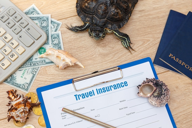 Reisverzekeringspolis en redeared turtle