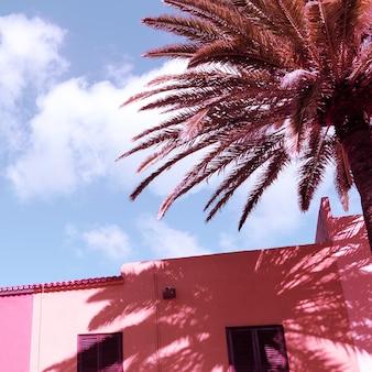 Reizen conceptontwerp. palm. canarisch eiland