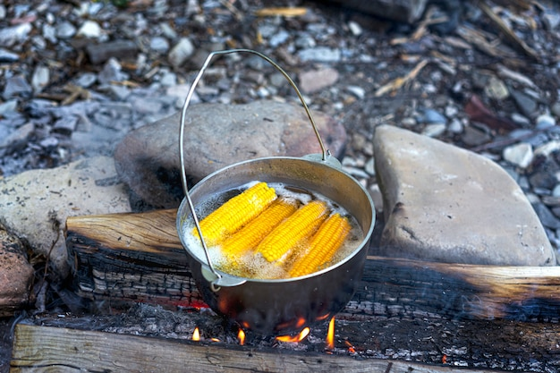 Reizen, toerisme, picknick koken of koken in een ketel op het vuur, pot koken met maïs bij het kampvuur op picknick.