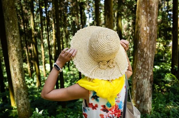 Reizende aziatische vrouw die in het bos in xitou, nantou, taiwan wandelt