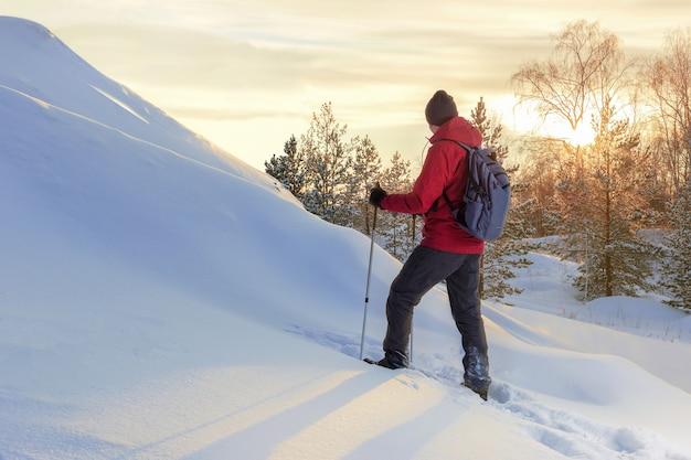 Reizende mens die op zonsondergang in wihter-bergen kijkt.