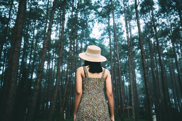 Reiziger aziatische vrouw bezienswaardigheden in de tuin van de pijnboomboom in doi bo luang forest park chiang mai, thailand
