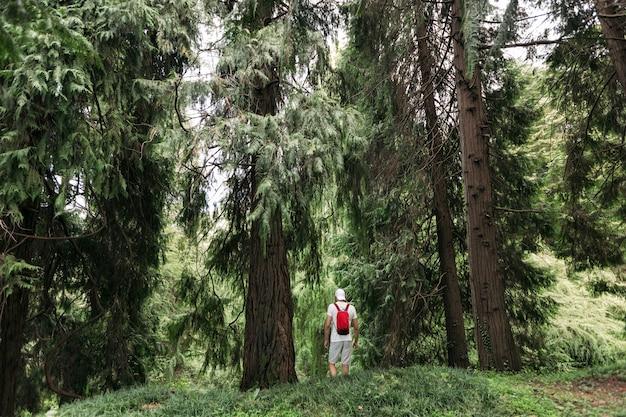 Reiziger man met rugzak wandelen in het bos