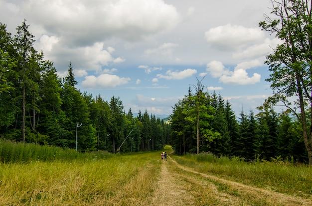 Reizigers lopen in de bergen
